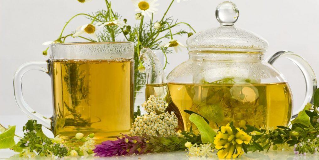 heilkraeuter fuer verdauung,stoffwechsel undimmunsystem