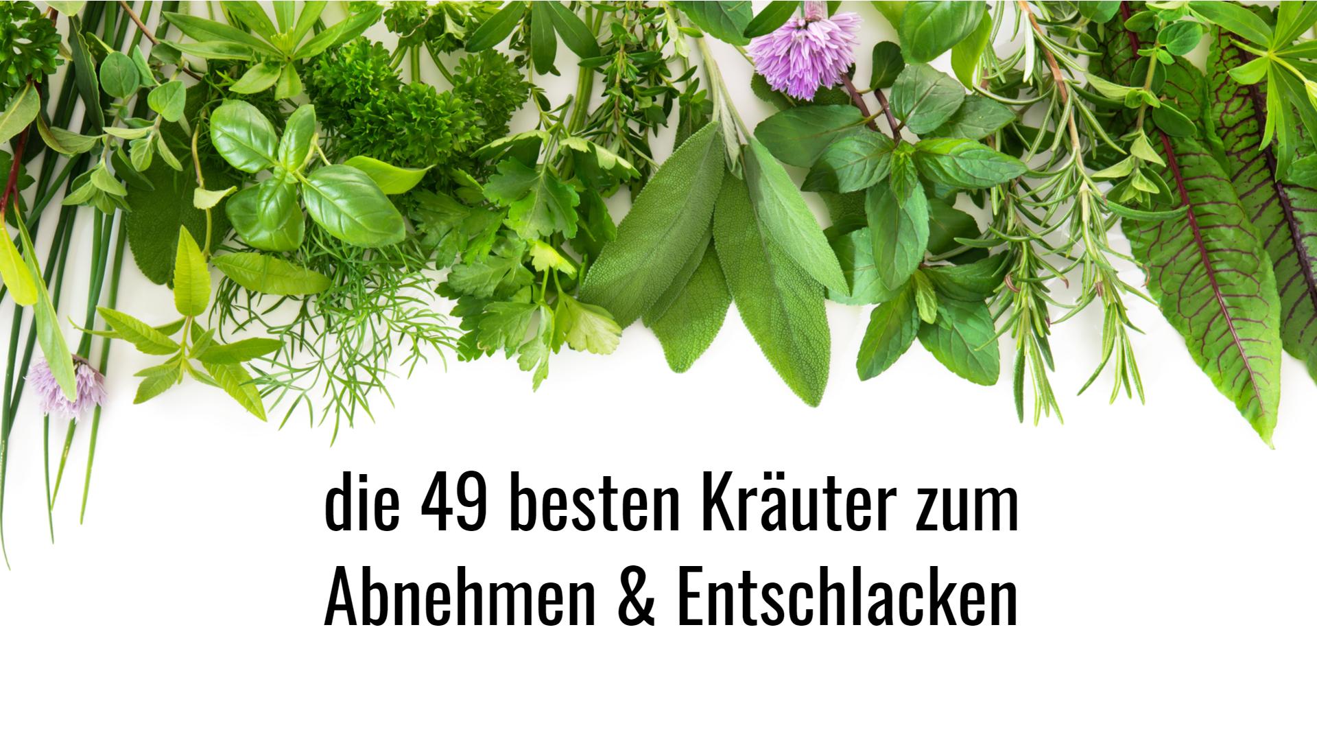 49 Kraeuter zum Abnehmen und Entschlacken