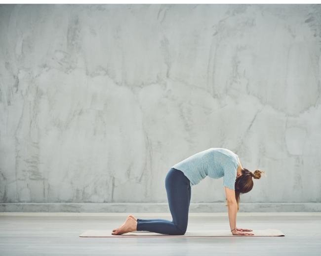 Yogapose Katze zuer Staerkung der Milz